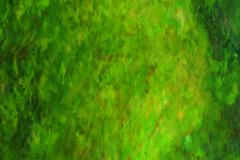 51_2007_Outback-I_170x55